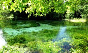Góry, lasy i jeziora Macedonii