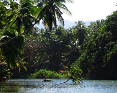 Karaiby – 8 powodów dla których warto tam pojechać!
