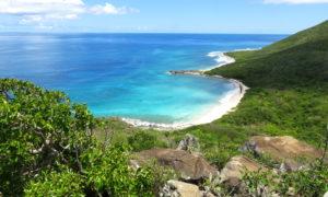 Jak radzić sobie z Urzędem Imigracyjnym na Karaibach?